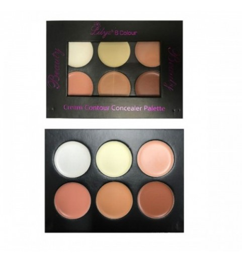 Lilyz 6 Colour Cream Contour Concealer Palette – Light